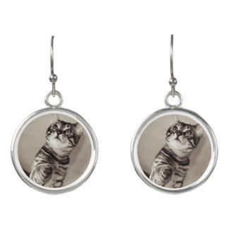 Cute Bengal Kitten Photo Earrings