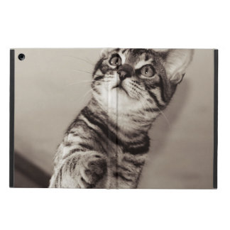 Cute Bengal Kitten Photo iPad Air Case