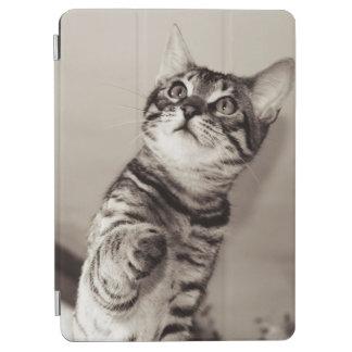 Cute Bengal Kitten Photo iPad Air Cover