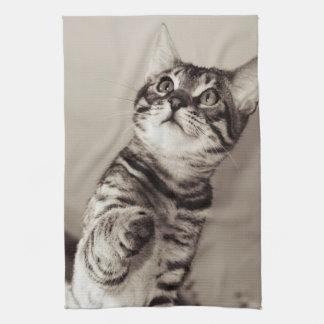 Cute Bengal Kitten Photo Tea Towel