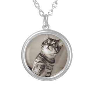 Cute Bengal Kitten Silver Plated Necklace