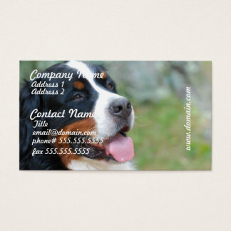 Cute Bernese Business Cards