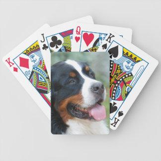 Cute Bernese Deck of Cards