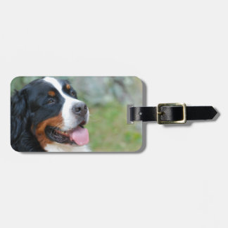 Cute Bernese Luggage Tag