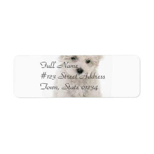 Cute Bichon Frise Mailing Label Return Address Label