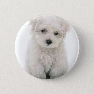 Cute Bichon Frise Round Button