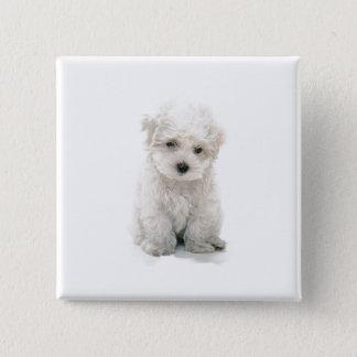 Cute Bichon Frise Square Pin