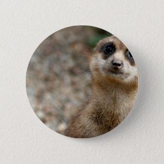 Cute Big-Eyed Meerkat 6 Cm Round Badge