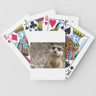 Cute Big-Eyed Meerkat Bicycle Playing Cards
