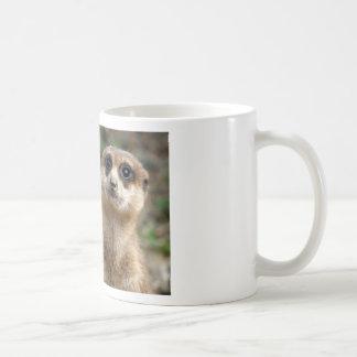Cute Big-Eyed Meerkat Coffee Mug