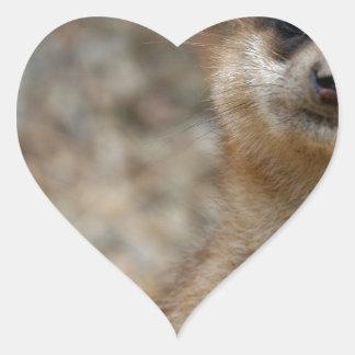 Cute Big-Eyed Meerkat Heart Sticker