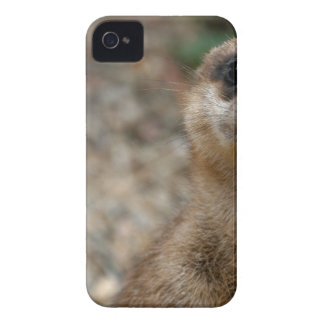Cute Big-Eyed Meerkat iPhone 4 Case