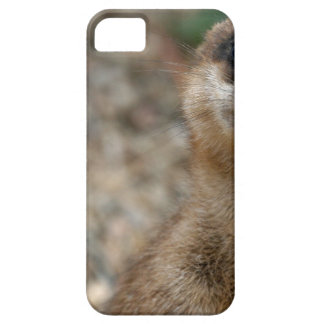 Cute Big-Eyed Meerkat iPhone 5 Cover