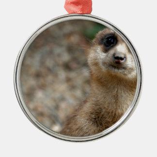 Cute Big-Eyed Meerkat Metal Ornament