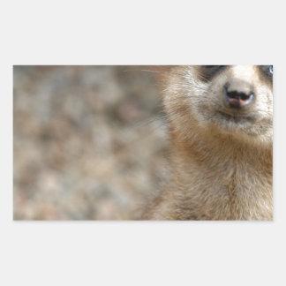 Cute Big-Eyed Meerkat Rectangular Sticker