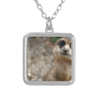 Cute Big-Eyed Meerkat Silver Plated Necklace