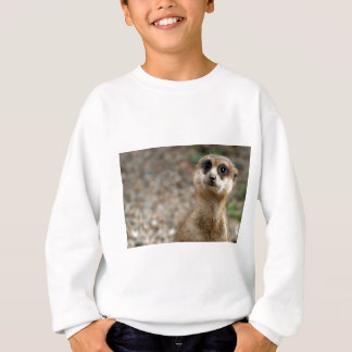 Cute Big-Eyed Meerkat Sweatshirt