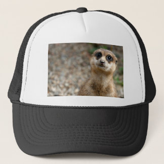Cute Big-Eyed Meerkat Trucker Hat