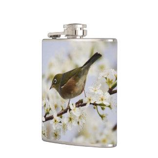 Cute Bird and Cherry Blossom Flasks