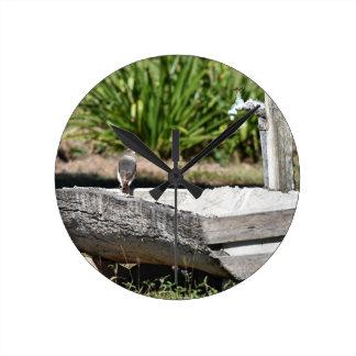 CUTE BIRD RURAL QUEENSLAND AUSTRALIA WALLCLOCK