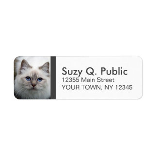 Cute Birman Cat Label Return Address Label