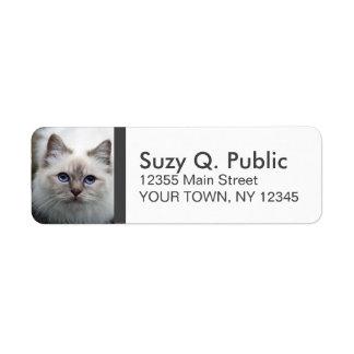 Cute Birman Cat Label Return Address Label