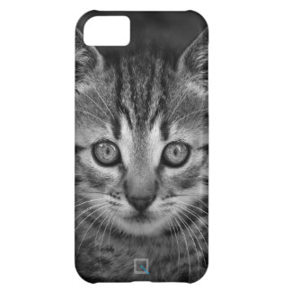 Cute black and white cat, iPhone 5c Case