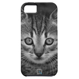 Cute black and white cat, iPhone SE/5/5s Case