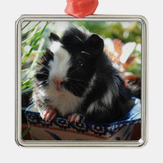 Cute Black and White Guinea Pig Silver-Colored Square Decoration