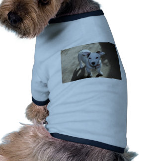 Cute Black And White Of Jack Russell Puppy Doggie Tshirt