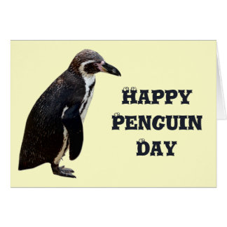 Cute Black and White Penguin Birthday Card