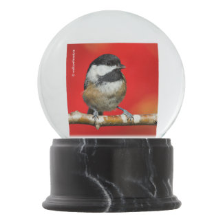 Cute Black-Capped Chickadee with Red Autumn Leaves Snow Globe