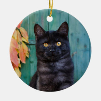 Cute Black Cat Kitten with Red Leaves Blue Door ' Ceramic Ornament