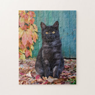 Cute Black Cat Kitten with Red Leaves Blue Door .. Jigsaw Puzzle