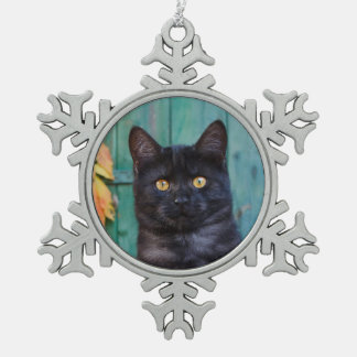 Cute Black Cat Kitten with Red Leaves Blue Door ** Snowflake Pewter Christmas Ornament
