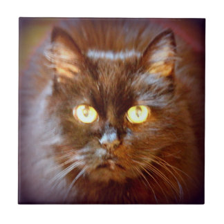 cute black cat small square tile