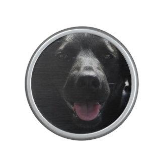 Cute Black Dog Face Bumpster Speakers Speaker