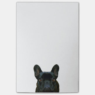 Cute Black French Bulldog Photograph Post-it® Notes