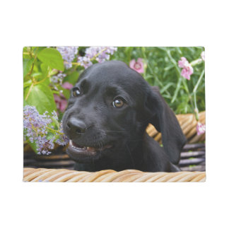 Cute Black Labrador Retriever Dog Puppy Pet Photo Doormat