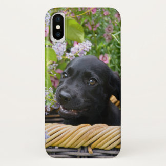 Cute Black Labrador Retriever Dog Puppy Pet Photo iPhone X Case