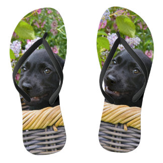 Cute Black Labrador Retriever Dog Puppy Pet Photo Thongs
