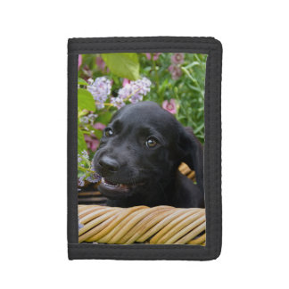 Cute Black Labrador Retriever Dog Puppy Pet Photo Tri-fold Wallets