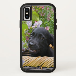 Cute Black Labrador Retriever Dog Puppy Photo ** iPhone X Case