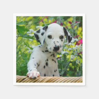 Cute black spotted Dalmatian Baby Dog Puppy Photo Disposable Serviette