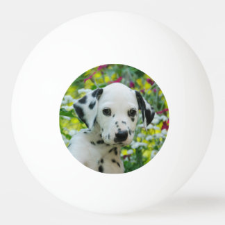 Cute black spotted Dalmatian Baby Dog Puppy Photo Ping Pong Ball