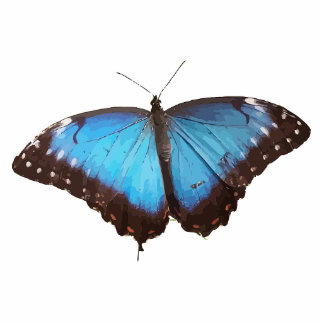 Cute Blue Butterfly Animal Office Party Shower Art Photo Sculpture Key Ring