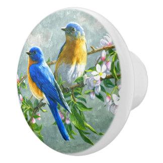 Cute Blue Yellow Birds Cherry Blossom Watercolor Ceramic Knob