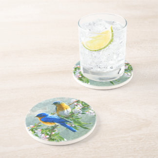 Cute Blue Yellow Birds Cherry Blossom Watercolor Coaster