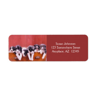 Cute Border Collie Puppies Return Address Label