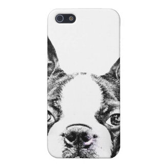 Cute Boston Terrier dog iPhone 5 Cases